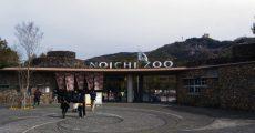 高知・のいち動物公園に行ってきました!子供連れにはありがたい18歳以下は入園料無料の動物園